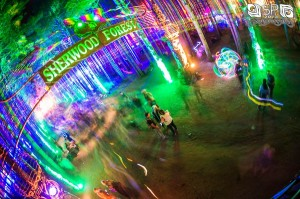 Electric Forest - 6.29.13